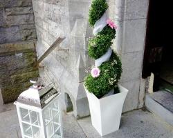 R101 Entrance Door Bay Tree with Lantern