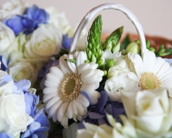 Flower Girls Flowers - FG15