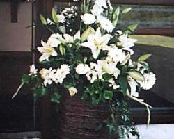 Hotel Flowers - C2
