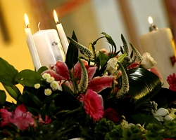 Red Altar Flowers - C67