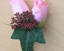 Pink Buttonholes BH23