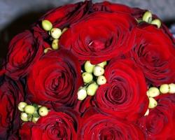 Red Bouquet B63