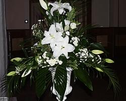 White Flowers Oran - C28